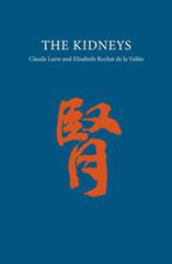 Zhineng Qigong Leestip - Energetische functie van de nieren