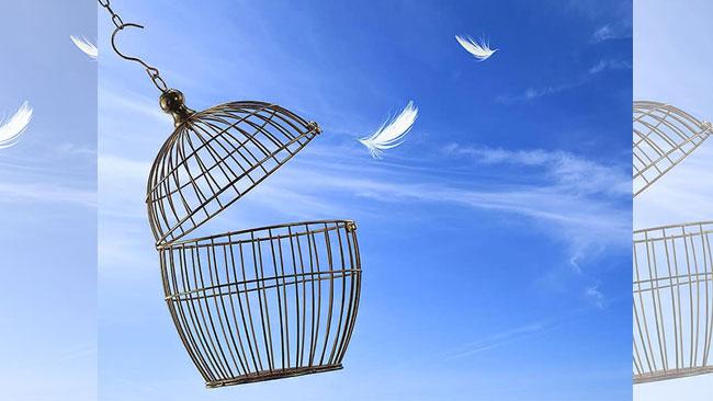 Verraad, vergeving, vrijheid- Uitgelichte afbeelding Yvonne Alefs