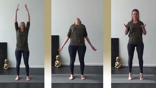 Baduanjin Qigong - Yvonne Alefs