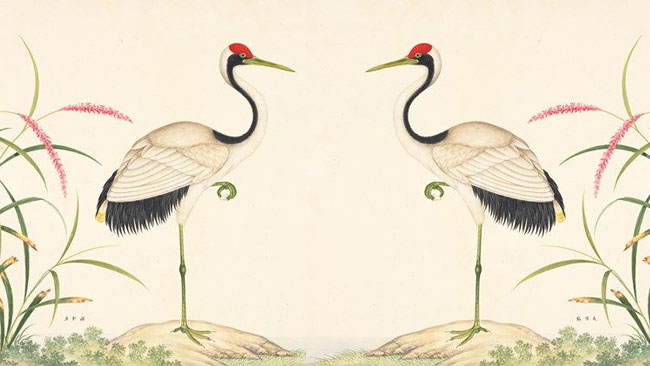 Balans en stabiliteit met Qigong- Uitgelichte afbeelding