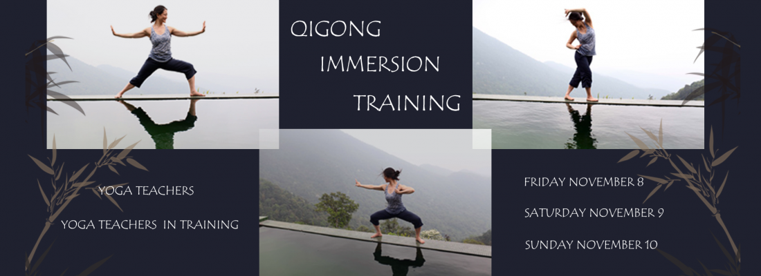 Qigong Immersion Training - Mimi Kuo Deemer - Banner Yvonne Alefs