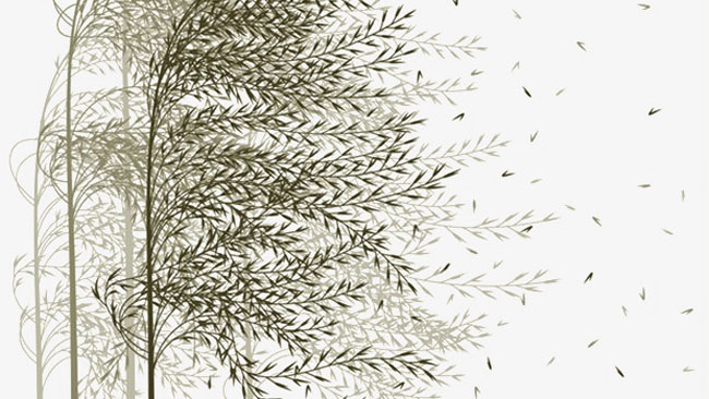 Qigong en metaforen voor het leven - uitgelichte afbeelding Yvonne Alefs