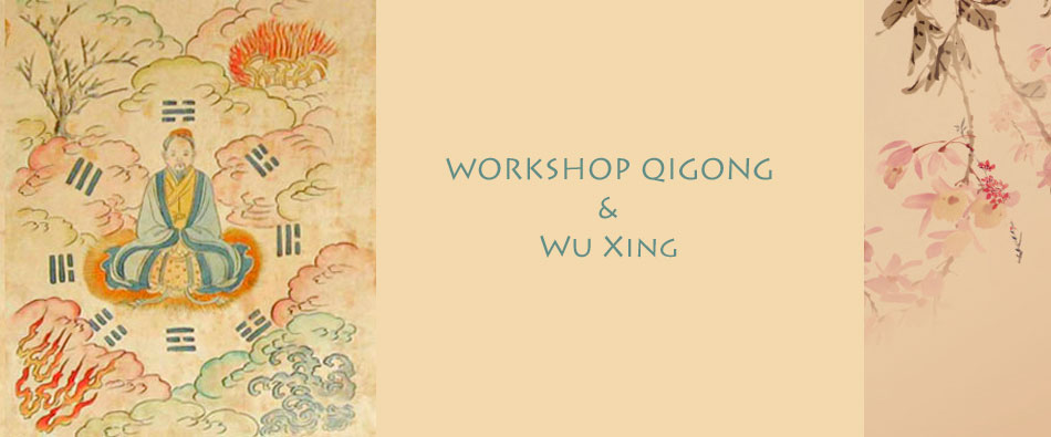Qigong en Wu Xing - Verdiepingscursus