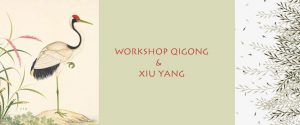 Qigong en Xiu Yang workshop 2020