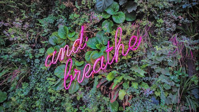 Ademhaling en Gezondheid - Uitgelichte afbeelding Yvonne Alefs
