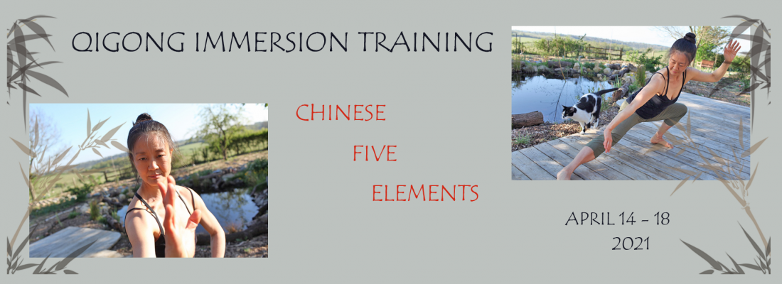 Qigong Immersion Five Elements 2021 - Mimi Kuo Deemer - Banner Yvonne Alefs