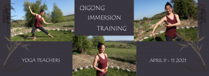 Qigong Immersion 2021 - Mimi Kuo Deemer - Banner Yvonne Alefs