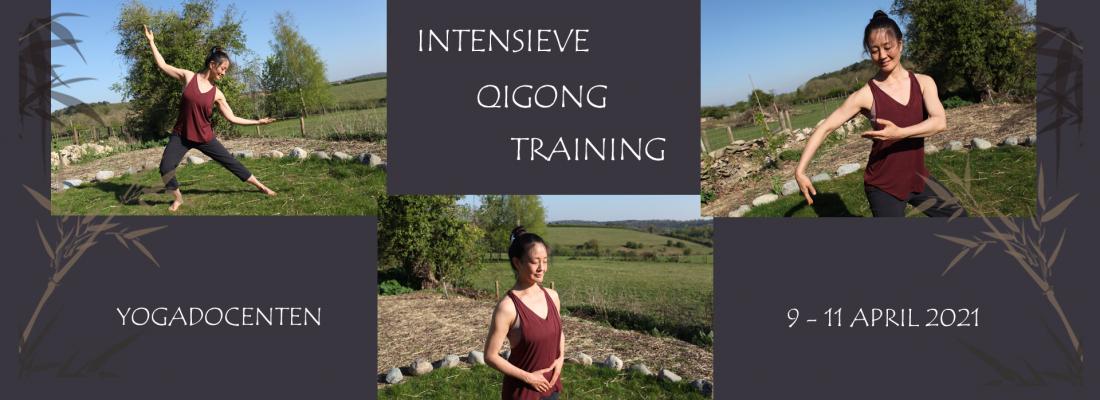 Intensieve Qigong Training 2021 - Mimi Kuo Deemer - Banner Yvonne Alefs