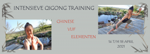 Intensieve Qigong Training 5 elementen 2021 - Mimi Kuo Deemer - Banner Yvonne Alefs