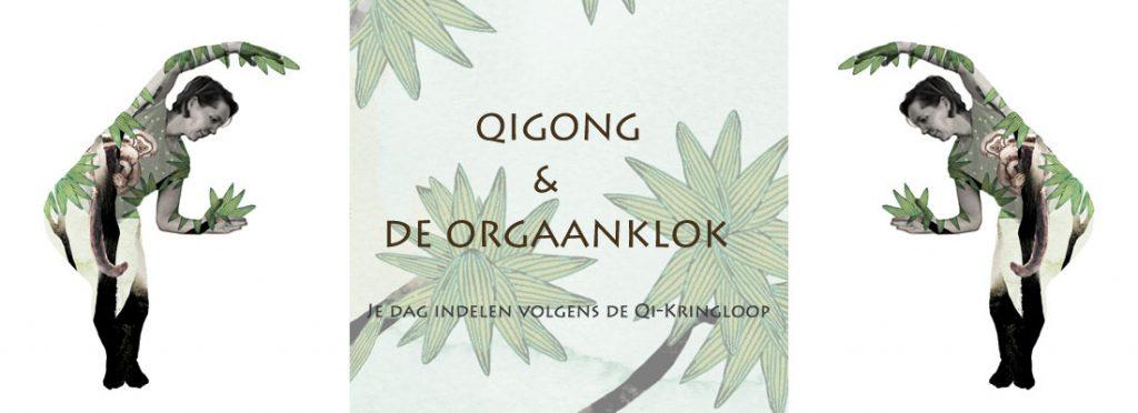 Qigong verdiepings les over de Orgaanklok