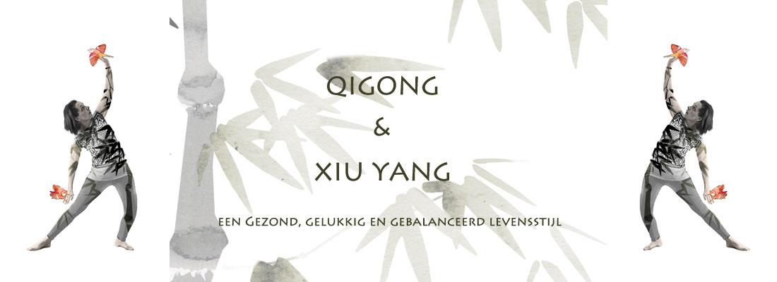 Qigong verdiepings les over Xiu Yang