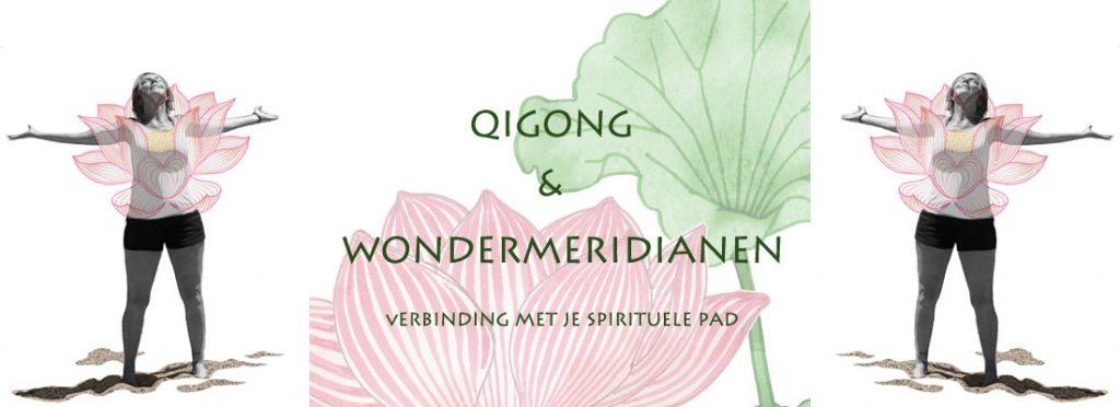 Qigong verdiepings les over Wondermeridianenen